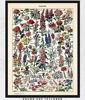 Vintage Flowers Wall Art Print: Unique Room Decor for Boys, Girls, Men & Women - (11x14) Unframed Picture - Great Gift Idea