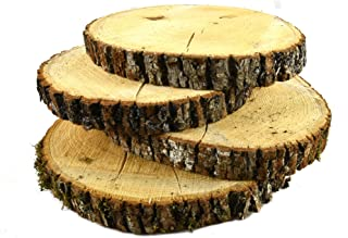 """Natural UNTREATED Basswood SLABS 7"""" to 10"""" Diameter (Large) - Excellent for Weddings, centerpieces, DIY Projects, Table Chargers or Decoration! by Woodland Decor (Set of Four SLABS)- with Cracks"""