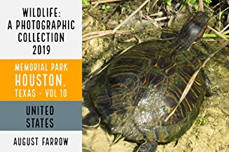 Wildlife: 19 Days in Memorial Park - 2019: A Photographic Collection, Vol. 10 (Wildlife: Memorial Park: Houston Texas)