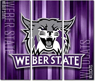 Victory Tailgate Weber State University Wildcats Canvas Wall Art Triptych Rush Design