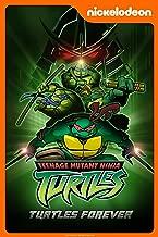 turtles forever film