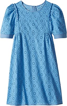 All Over Floral Embroidery Dress (Big Kids)