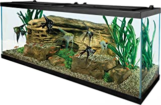 corner saltwater aquarium for sale