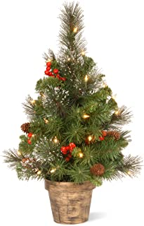 National Tree 2 Foot Crestwood Spruce Tree with Silver Bristle, Cones, Red Berries, 35 Clear Lights in Bronze Pot (CW7-306-20)