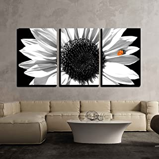 Best black and white sunflower canvas Reviews