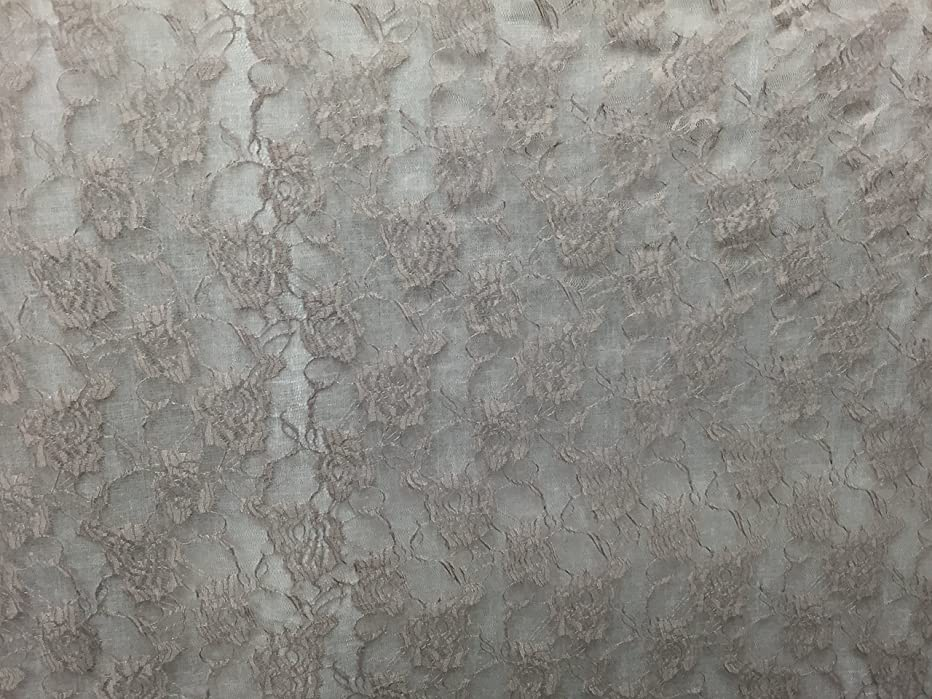 Katz Trimming / Trims Unlimited Beautiful Lace Taupe Color with Floral Design Fabric ~ 2 Yds~ 58