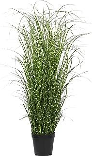 Best artificial zebra grass plant Reviews
