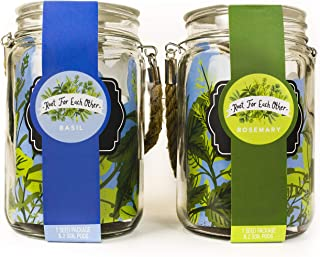 Thoughtfully Gifts, Lantern Herb Jars with Hanging Rope 2 Pack, Grow Your Own Herb Gift Set, Includes Two Stylish 24 Ounce Lantern Jar Planters, Rosemary and Basil Seeds, and 4 Soil Pods