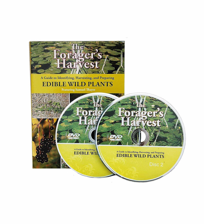 The Forager's Harvest - Wild Food, 2 DVD Set