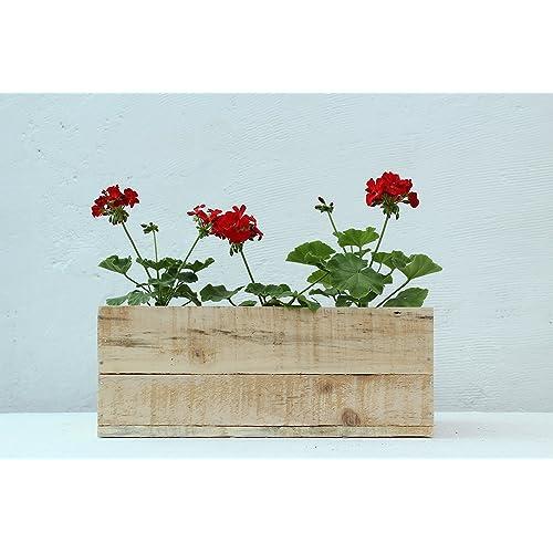 Green Gardenia Table Top Wooden Box Planter (Natural)