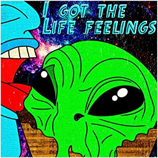 I Got the Life Feelings [Explicit]