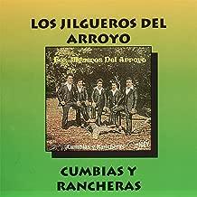 Cumbias y Rancheras