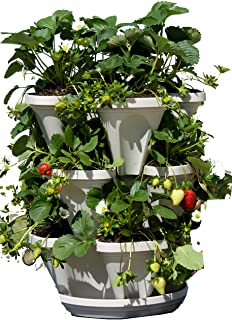 Sponsored Ad - 3 Tier Stackable Herb Garden Planter Set - Vertical Container Pots for Herbs, Strawberries, Flowers