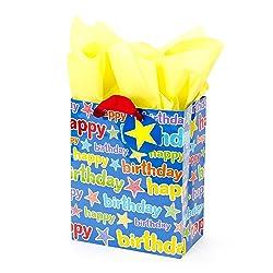 Hallmark Medium Birthday Gift Bag with Tissue Paper (Blue Happy Birthday)