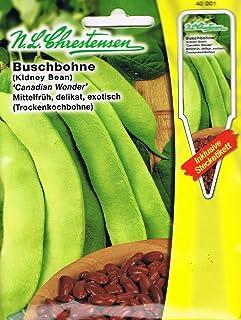 Kidneybohnen, Canadian Wonder (Trockenkochbohnen) - (Portion