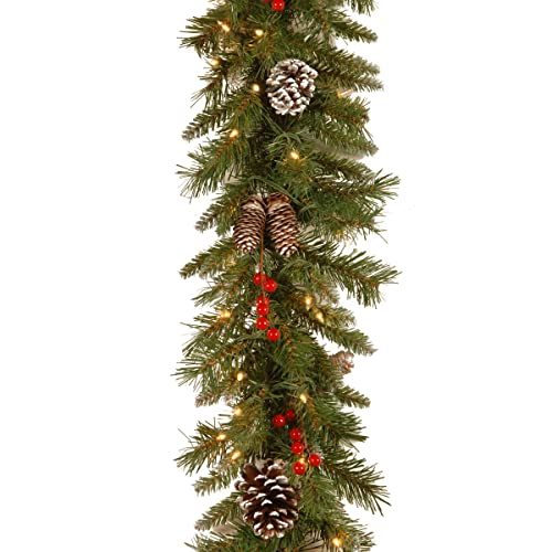 81add09d248 National Tree 9 Foot by 10 Inch Frosted Berry Garland with 100 Clear Lights  (FRB