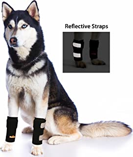 Pair of NeoAlly Dog & Cat Front Leg Braces Carpal Support with Safety Reflective Straps for Front Hock Joint, Cruciate Ligament, Wound Healing and Loss of Stability from Arthritis