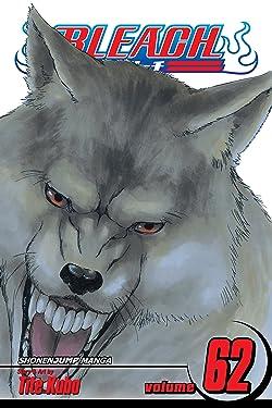 Bleach, Vol. 62: Heart of Wolf