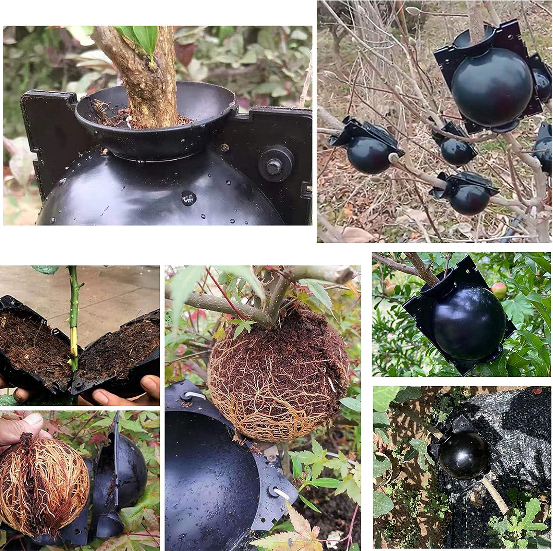 Negro Aokbean 9 Caja De Injerto Caja De Enraizamiento De Plantas Bola De Propagaci/ón De Alta Presi/ón Dispositivo De Enraizamiento De Plantas para Injerto De Jard/ín,Enraizamiento