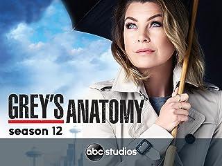 Grey's Anatomy (Yr 12 2015/2016)