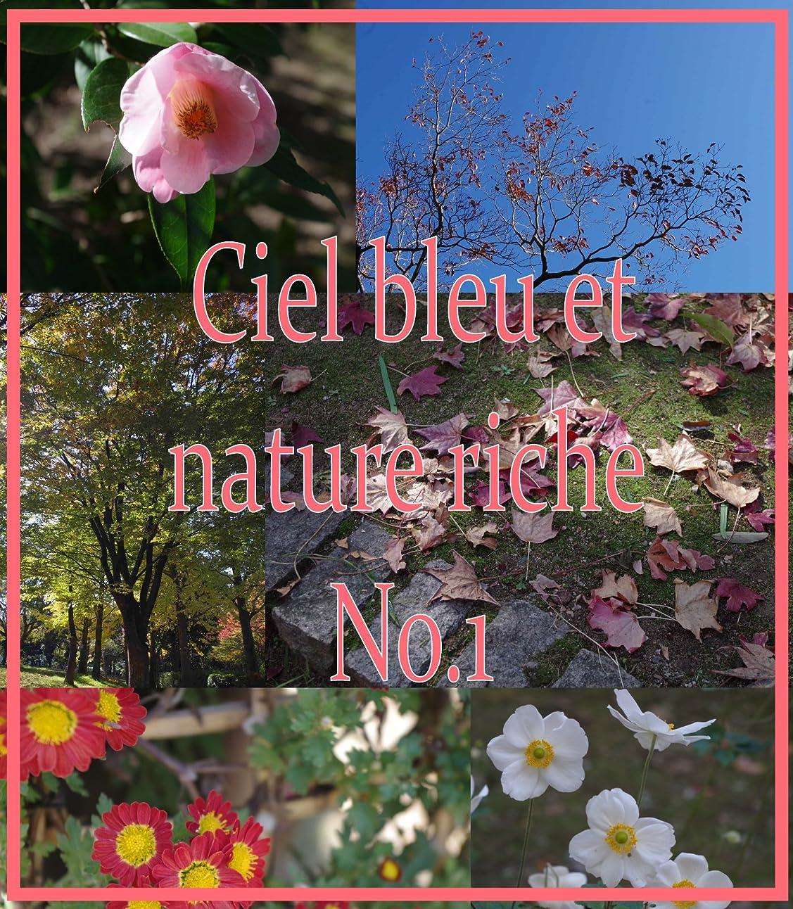 悪い救急車バットCiel bleu et nature riche No.1 (French Edition)