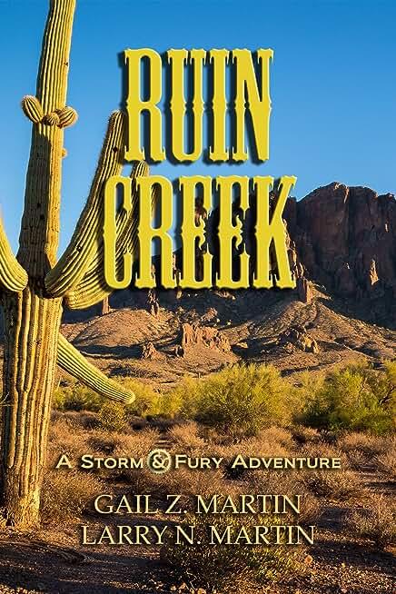 Ruin Creek (A Storm & Fury Adventure) (English Edition)