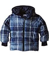 Dolce & Gabbana Kids - Back to School Nylon Check Coat (Toddler/Little Kids)