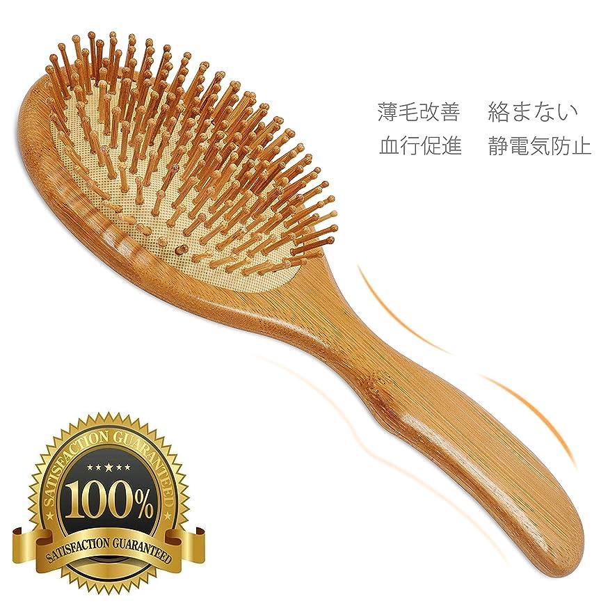 管理するセミナーおもしろいバリイチゴ屋 マッサージ櫛 パドルブラシ 髪 絡まない 抜け毛?薄毛改善 血行促進 ヘアブラシ
