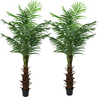 LEISURE 5.9-ft Artificial Silk Palm Tree Set Of Two Pre-Potted with Bendable Branches for Home, Restaurant, Cafe or Office Indoor and Outdoor Decorating (Type 2)