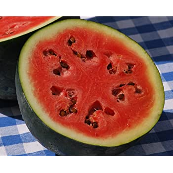 50+ Sugar Baby Watermelon Seeds- Heirloom, Non-GMO, Open-Pollinated by Ohio Heirloom Seeds