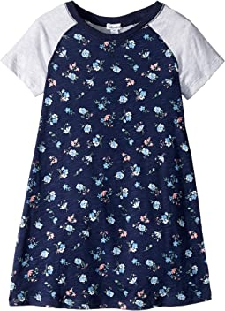 Floral Raglan Sleeve Dress (Toddler/Little Kids)