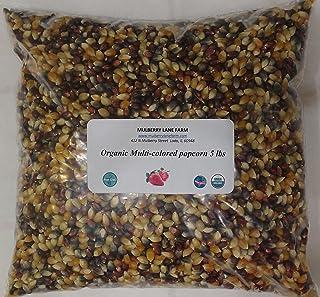 Multi-colored Popcorn Popping Corn 5 Pounds (Calico or Rainbow) Kernels, Whole Grain, USDA Certified Organic, Non-GMO Bulk
