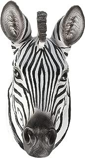 zebra taxidermy mounts