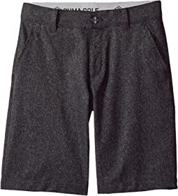 PUMA Golf Kids Heather Pounce Shorts JR (Big Kids)