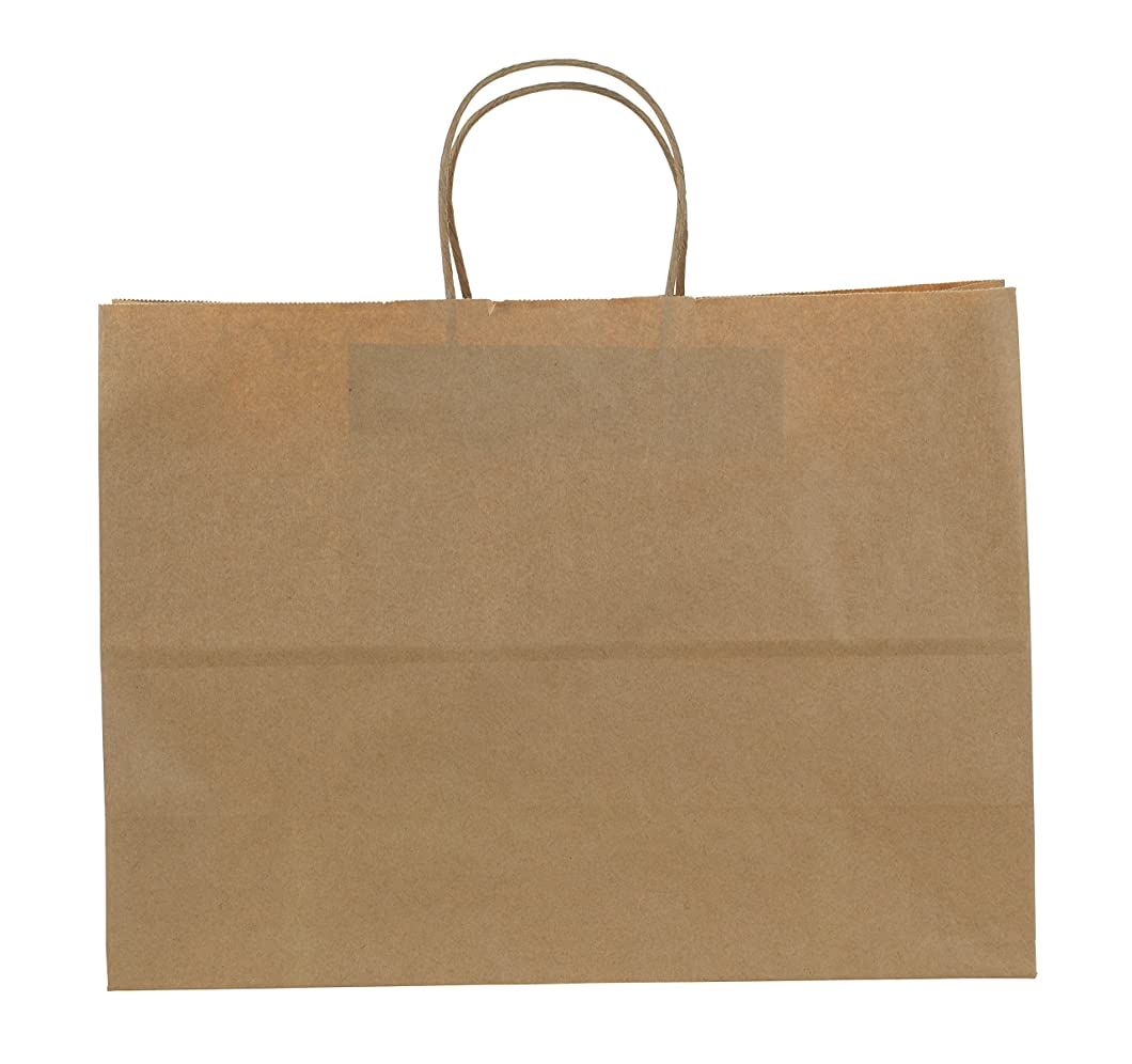 Premier Packaging AMZ-201525 12 Count Shoppers Gift Bag, 16 by 6 by 12-1/2-Inch, Kraft bkdrbbl41