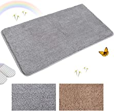 Indoor Doormat Front Door Mat Non Slip Rubber Back Door Mats Magic Inside Dirt Trapper Entry Rugs Entrance Door Rug Machine Washable Door Carpet Mat - Grey, 20