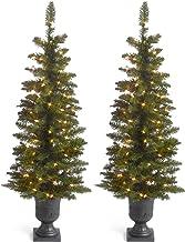 The Sterling Company Set of 2-4` Ptd Cedar Pine Home Decor, 11InL x 30InW x 45InH, Green