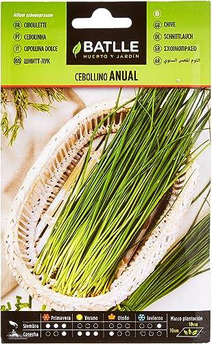 Semillas Aromáticas - Cebollino anual - Batlle