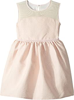 Brocade Mesh Illusion Neckline Dress (Toddler/Little Kids)