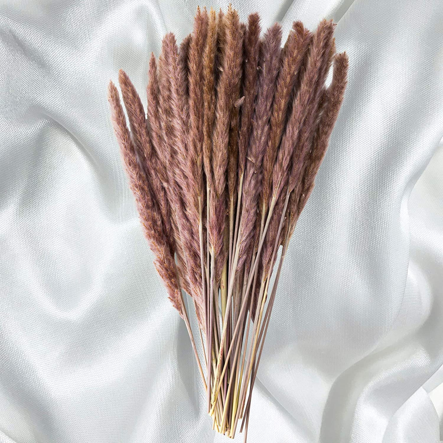 40 Pack GlamStems Natural Dried Pampas Grass Decor 18in w/ Box | Pampas Grass Large | Pampas Grass Small | Dry Pampas Grass | Small Pampas Grass Tall | Pampas Grass Decor Tall Fluffy | Dried Grass
