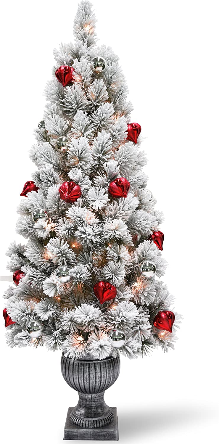 National Cash special price Tree 5 Foot Pine Entrance National products Snowy Bristle