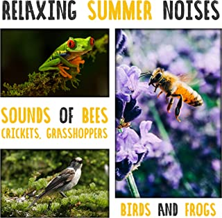 Relaxing Summer Noises: Sounds of Bees, Crickets, Grasshoppers, Birds and Frogs