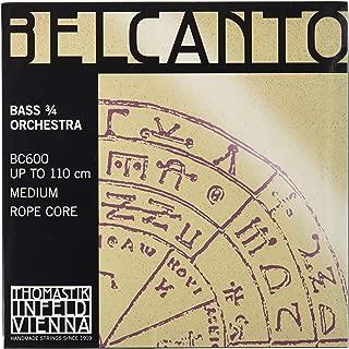 Dr Thomastik Contra Bass Strings (BC600)