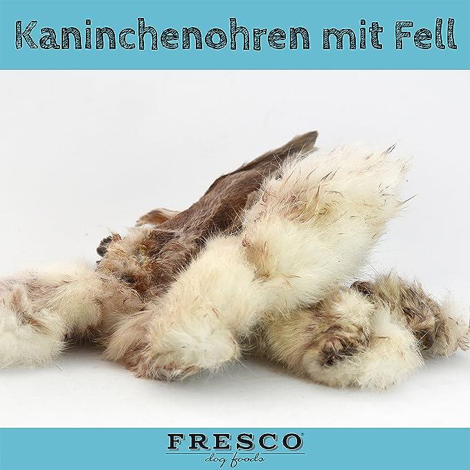 Fresco Dog Kaninchenohren
