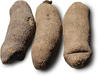 Best african tuber of yam Reviews