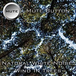 Best white noise wind Reviews