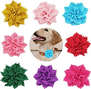 dog collar bows and flowers