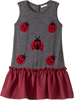Dolce & Gabbana Kids - Back to School Lady Bug Dress (Toddler/Little Kids)
