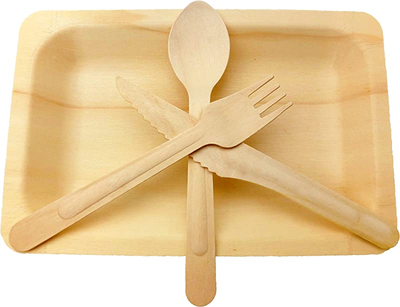 Wooden Disposable Cutlery Set Of 10 Plate 10 Forks 10 Spoons 10 Knives 6 Inch Utensils Biodegradable Compostable Dinnerware Wedding BBQ Catering Party Supplies Pack Of 40