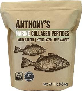 Anthony's Hydrolyzed Marine Collagen Peptides, 1lb, Gluten Free, Paleo & Keto Friendly